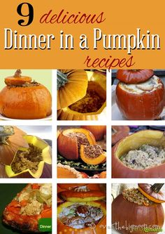 9 Delicious Dinner in a Pumpkin Recipes Look for that perfect dinner in a pumpkin recipe? We've got 9 delicious dinner in a pumpkin recipe suggestions for you! Thanksgiving Recipes, Fall Recipes, Holiday Recipes, Dinner Recipes, A Pumpkin, Pumpkin Recipes, Stuffed Pumpkin, Cooking Pumpkin, Pumpkin Ideas