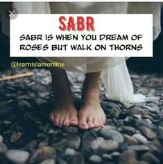Sabr Islam, Dreaming Of You