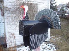 Turkeys : Turkey mailbox : Pictures : 143882