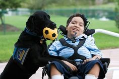 """""""I used to be the kid in the wheelchair, Now, I'm the kid with the amazing dog."""" ~Cory with """"Melly"""" #Labrador"""