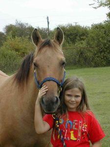 Child's horse