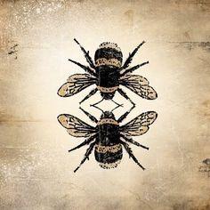 bee reflection