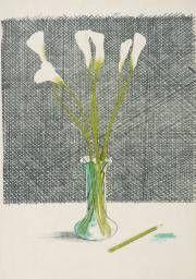 David Hockney 'Lillies', 1970–1 © David Hockney