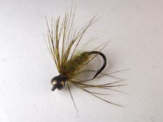 The following is a selection of my favorite carp flies. To get more information click on the title to go to a blog post where applicable o... Carp Flies, Fly Tying Patterns, Fish, Spider, Salmon, Blog, Fishing, Spiders, Pisces