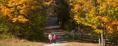 Sherbrooke, Québec, en automne