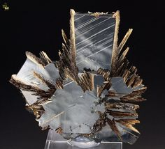 Hematite, Rutile Photo Copyright © Quebul Fine Minerals - This image is copyrighted. Locality: Novo Horizonte, Bahia, Brazil x Rutile sprays on lustrous Hematite. Cool Rocks, Beautiful Rocks, Minerals And Gemstones, Rocks And Minerals, Rock Collection, Mineral Stone, Vanitas, Rocks And Gems, Stones And Crystals