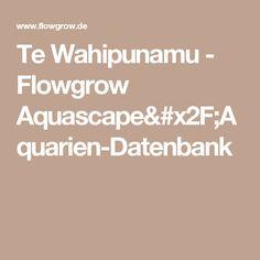 Te Wahipunamu - Flowgrow Aquascape/Aquarien-Datenbank