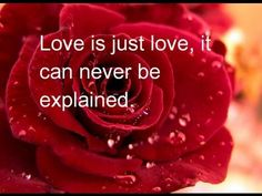 ▶ Best English LoveSong + Inspire Quotes -Part 2- - YouTube