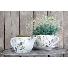 Cute little set of dishes to put plants in, decorative planters, DIY decor, home decor, patio decor