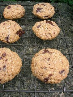 Oaty Coconut, Fennel and Chocolate Cookies