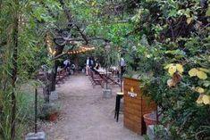 MADRID-COOL-BLOG-OLIVAR-DE-CASTILLEJO-03-G Ibiza, Butterfly Nail Designs, Pink Acrylics, Secret Places, Best Blogs, Plein Air, Patio, Seasons, Outdoor Decor
