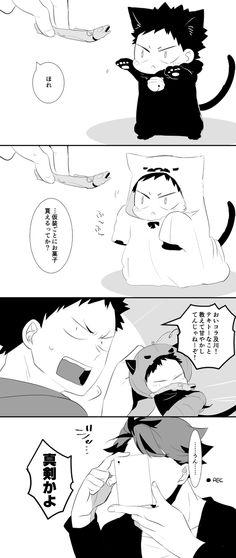 猫川くんと猫泉くん [6]