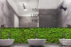 GREEN WALLS - projektowanie i wykonawstwo zieleni we wnętrzach, rośliny do wnętrz - Kraków: ŚCIANY Z MCHU W FACTORY PARK