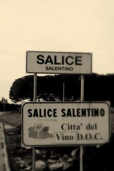 About Salice Salentino