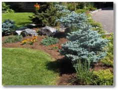 1000 Images About Front Yard Driveway Landscaping On 640 x 480