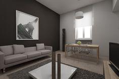 Villa Elena renovation project