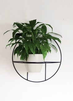 Metal Planters, Planter Pots, Wood And Metal Shelves, Cosmo, Diy Plant Stand, Decoration, Bloom, Herbs, Gardens