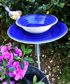 Bird bath and feeder made from blue ceramic bowl & plate and upside down glass vase
