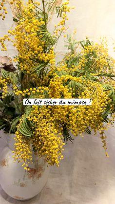 Dried And Pressed Flowers, Dried Flowers, Spring Home Decor, Spring Crafts, Yellow Flowers, Spring Flowers, Herbs, Vase, Plants