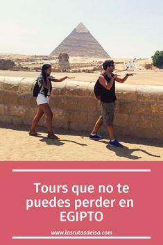 Los mejores tour para hacer desde la ciudad de EL CAIRO Areas Protegidas, Nature Animals, Egypt, Places To Go, Louvre, Building, Trips, Poster, Travel