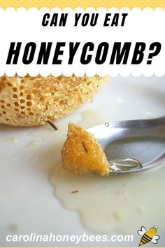 Is honeycomb edible? Yes, you can eat honeycomb and many people prefer the taste of honey in the wax comb. #carolinahoneybees #eatinghoneycomb #beeswax Can You Eat Honeycomb, Eating Raw, Healthy Eating, Cooking With Honey, Honey Recipes, Raw Honey, Canning, Breakfast