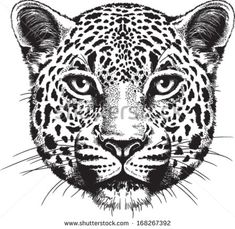 Black And White Vector Sketch Of A Leopard& Face - 168267392 : Shutterstock Jaguar Tattoo, Leopard Tattoos, Tiger Face Drawing, Face Drawings, Tattoo Gesicht, Vektor Muster, Cheetah Face, Face Outline, Face Illustration