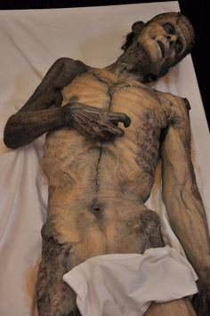 Fantastic creation by mike hill, i think. Easy Clay Sculptures, Sculpture Art, Frankenstein Art, Monster Makeup, Traditional Sculptures, Statues, Human Oddities, Man Anatomy, Alien Creatures