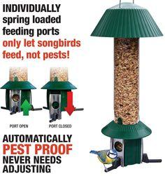 Open-Minded Roamwild Pestoff Rat Proof Chicken Feeder Kit Pet Supplies Rat Proof Large Bird Proof Pou