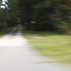 Lowcountry Road, via Flickr.