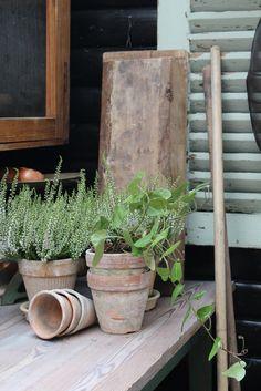 ♥ potting shed ♥
