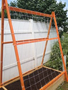 Cucumbers on string trellis, lettuces in box - space saver!