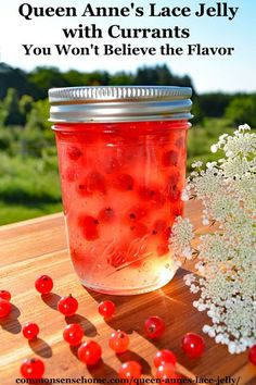 Queen Anne's Lace Jelly with Currants - The bright acidity of currants is a perfect compliment to the delicate floral flavor of Queen Anne's lace jelly. Sauce Pizza, Jam And Jelly, Jelly Jelly, Think Food, Queen Annes Lace, Canning Recipes, Canning Tips, Sauces, Herbalism