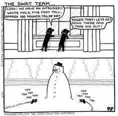 The SWAT Team