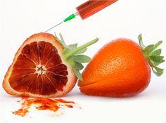 http://zipmanipulation.wordpress.com/  #hybrid #fruit #orange #strawberry