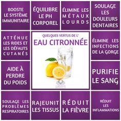 Les vertus de l'eau citronnée   Eau Citronnée Le Monde s'Eveille Grâce à Nous Tous ♥