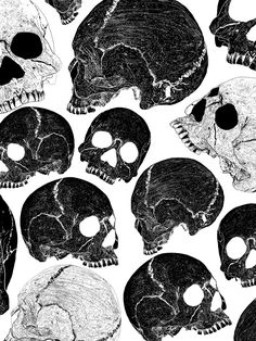black n white skull motif Skull Wallpaper, Wallpaper Backgrounds, Wallpapers, White Wallpaper, Mobile Wallpaper, Wallpaper Caveira, Skulls And Roses, White Prints, Arte Horror