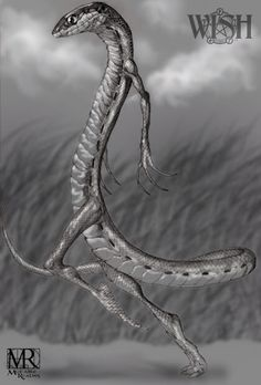 Attorcroppes- germanic myth: they resemble small snakes, with human arms and legs. They can walk upright using their legs. They have the reputation to be malicious, yet astoundingly curious.
