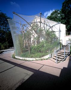 The wire mesh monkey enclosure at Halle Zoo in Germany perfectly illustrates why stainless steel cable mesh is so appealing for use in zoological enclosures Marmoset Monkey, Pygmy Marmoset, Reptile Zoo, Reptile Cage, Monkey Cage, Reptiles, Zoo Architecture, Small Monkey, Halle
