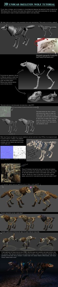 3D Skeleton Wolf Tutorial by 100chihuahuas.deviantart.com on @deviantART