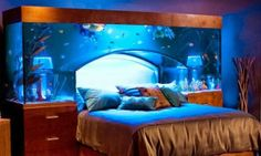 Aquarium Bedroom It's cool, it really is...but I'd never be able to fall asleep XD 10 Spectacular Bedrooms - IcreativeD