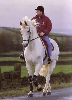 Milton -  He radiated such  unspoken presence. As seen here taking a leisurely hack along a country lane.