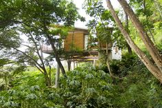 Tropical Casa Flotanta Hovers Lightly Above the Pacific in Cos...