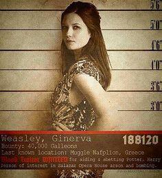 Hogwarts Alumni: Wanted Harry Potter Cast