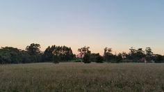 Pinks pastels blues sunset