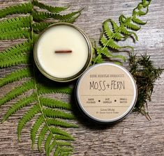 🌿🌱Unique, Inviting, and Clean... AMAZING🌱🌿 MOSS + FERN  Scented Soy Candle | 3.5oz Wood Wick Candle | Nature Inspired Scent | Housewarming Gift | Congratulations | Minimalist Candle | www.sidehustleserenity.etsy.com Wood Wick Candles, Mini Candles, Soy Candles, Candle Jars, Minimalist Candles, Candle Making Business, Nature Inspired, Glass Jars, Burning Candle