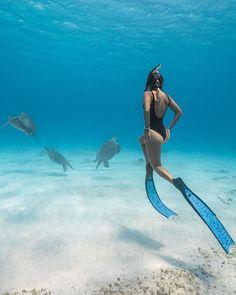 Scuba Travel, Sport Bikini Set, Underwater Pictures, Scuba Diving Equipment, Girl In Water, Scuba Girl, Ocean Creatures, Underwater Photography, Poses