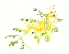 LEAFY SEA DRAGON Original watercolor painting 10X8inch Leafy Sea Dragon, Sea Life Art, Watercolor Effects, Color Pencil Art, Seahorses, Inspiring Art, Colored Pencils, Badges, Giraffe