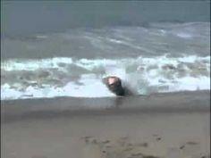 surfer bum