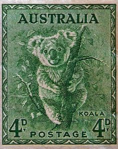 1937 Australia Koala Stamp by Bill Owen Rare Stamps, Vintage Stamps, Postage Stamp Art, Australian Animals, Rare Coins, My Stamp, Stamp Collecting, Mail Art, Science Nature