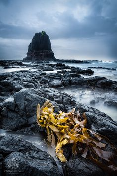 Making the Most of Gray Skies Part 1 by Phillip Norman on 500px